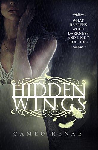 9781939769213: Hidden Wings