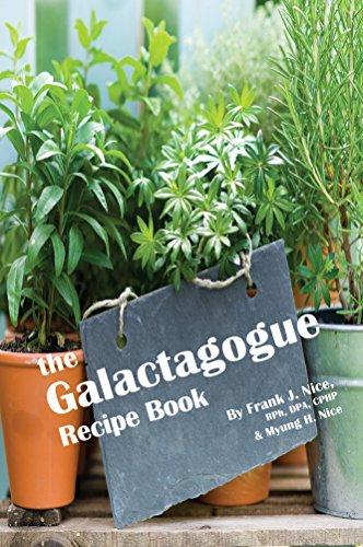 9781939847393: The Galactagogue Recipe Book