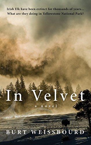 9781940207100: In Velvet: A Novel