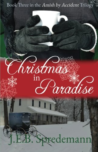 Christmas in Paradise (Amish by Accident Trilogy): J. E. B.