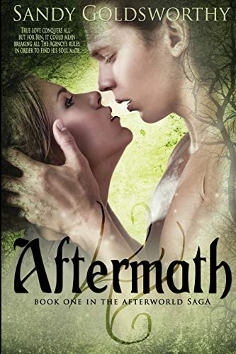 Aftermath (The Afterworld Saga): Sandy Goldsworthy