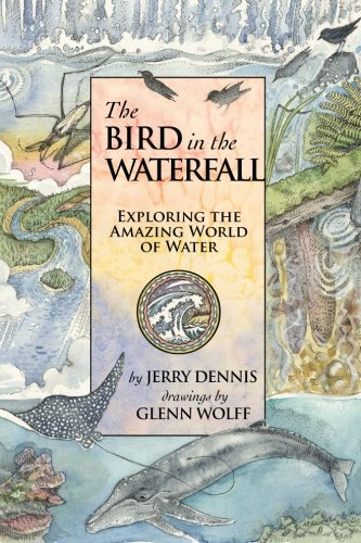 9781940941523: The Bird in the Waterfall: Exploring the Wonders of Water