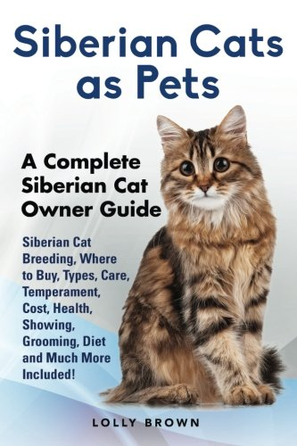 Siberian Cats as Pets: Siberian Cat Breeding, Where to Buy, Types, Care, Temperament, Cost, Health,...