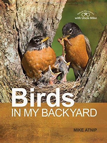 9781941213933: Birds in my Backyard