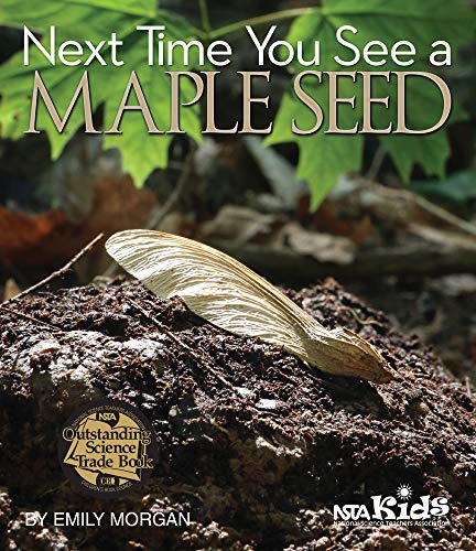 9781941316153: Next Time You See a Maple Seed (Library binding) - PB329X6L