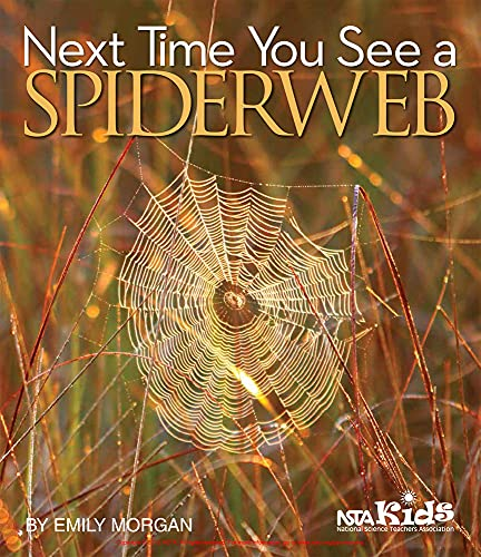 9781941316313: Next Time You See a Spiderweb
