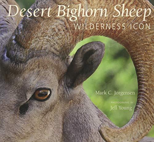 The Desert Bighorn Sheep: Wilderness Icon: Jorgensen, Mark C.; Young, Jeff
