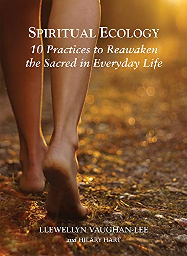 9781941394182: Spiritual Ecology: 10 Practices to Reawaken the Sacred in Everyday Life