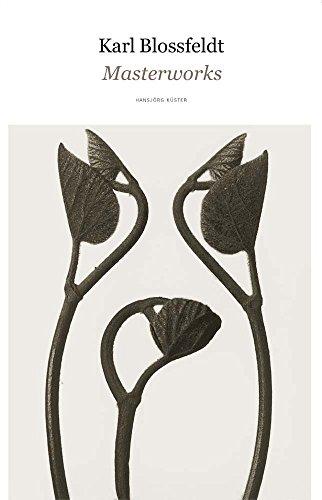 9781942884132: Karl Blossfeldt: Masterworks