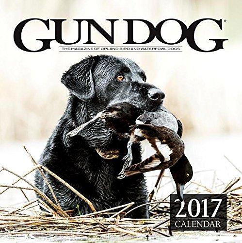 9781942889120: 2017 Gun Dog Calendar