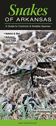 9781943334070: Snakes of Arkansas: A Guide to Common and Notable Species (Guide to Common & Notable Species)