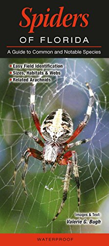 9781943334193: Spiders of Florida: A guide to Common and Notable Species