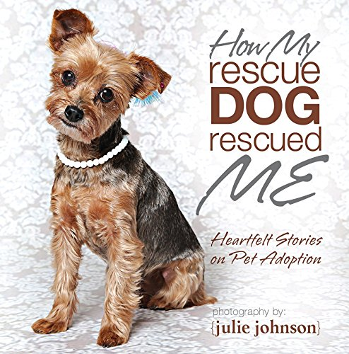 How My Rescue dog Rescued Me -: Julie Johnson