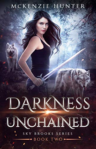 9781946457929: Darkness Unchained (Sky Brooks Series) (Volume 2)