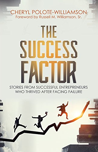 The Success Factor: Stories From Successful Entrepreneurs Who Thrived After Facing Failure: Cheryl ...