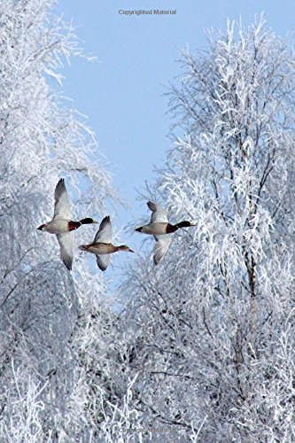 Three Geese Flying South Through a Snow: Creations, Cs