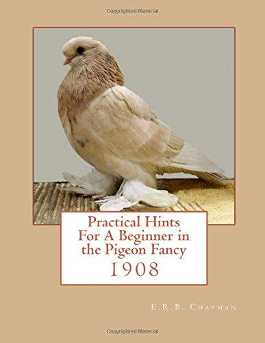 Practical Hints For A Beginner in the: Chapman, E. R.B.