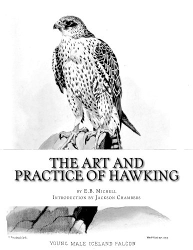 9781976336874: The Art and Practice of Hawking