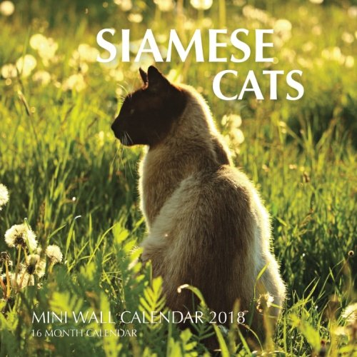 Siamese Cats Mini Wall Calendar 2018: 16 Month Calendar: Paul Jenson