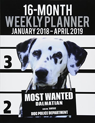 9781979577625: 2018-2019 Weekly Planner - Most Wanted Dalmatian: Daily Diary Monthly Yearly Calendar Large 8.5