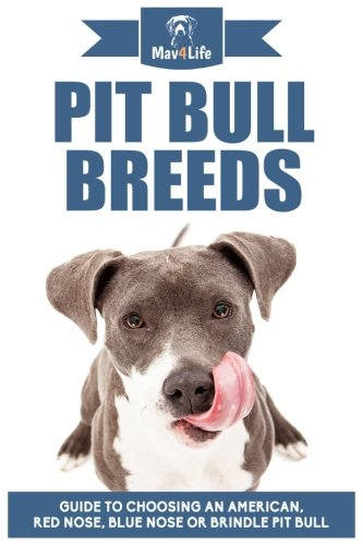 Pit Bull Breeds: Guide to Choosing an American, Red Nose, Blue Nose or Brindle Pit Bull: Mav4Life