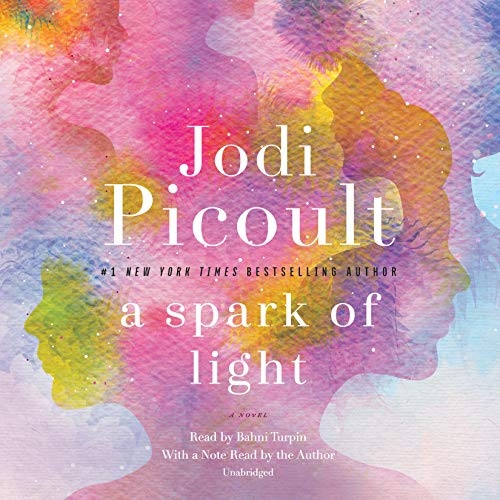 Book Cover: A Spark of Light: A Novel