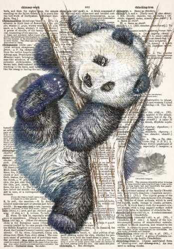 9781985728523: Panda Dictionary Art Notebook with Chinese Proverbs and Inspirational Quotes (A5): A Classic A5 Sized Ruled Composition Book/Journal with Lined Pages and Motivational Sayings