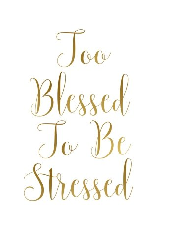 Too Blessed To Be Stressed Notebook (7 x 10 Inches): A Classic 7x10 Inch Ruled Journal/...