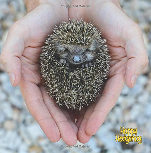 9781987869958: Happy Hedgehog: Blank Journal With Cute Pictures of Hedgehogs on the Front and Back Covers
