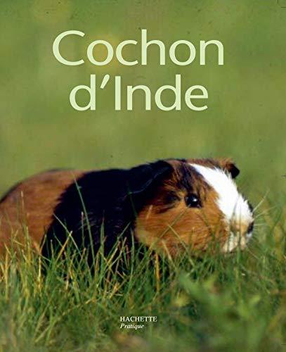 9782010174049: Le cochon d'Inde