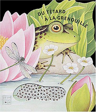 9782013927291: Du tétard à la grenouille