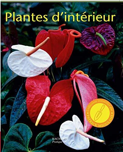 9782016210383: Plantes d'intérieur