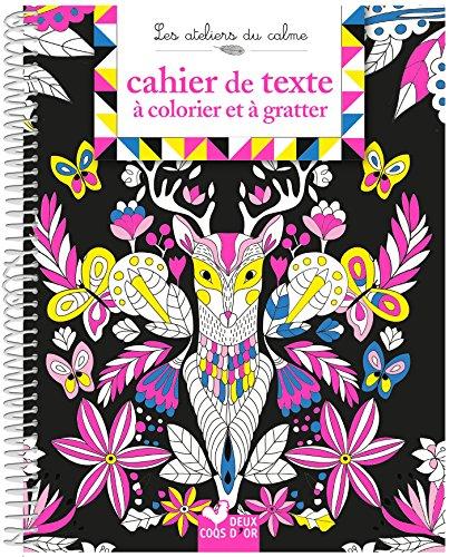 9782017029021: Cahier de texte à colorier et à gratter