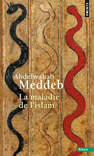 Maladie de L'Islam(la) (English and French Edition): Professor Abdelwahab Meddeb
