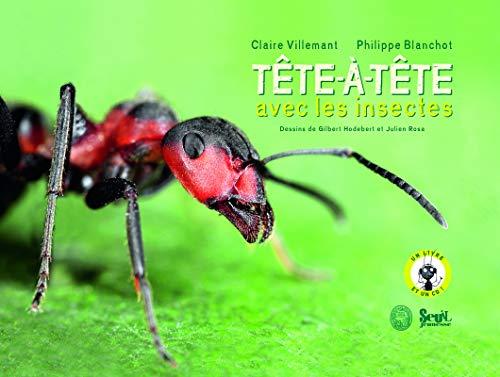 Tête-à-tête avec les insectes: Villemant, Claire