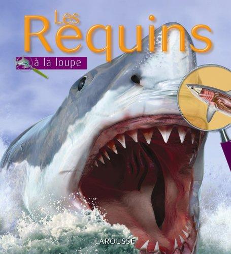 9782035841155: Les Requins