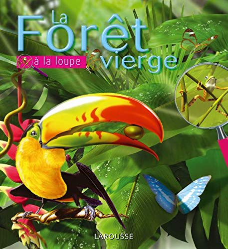 9782035841162: La Foret vierge (French Edition)