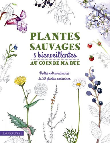 9782035898432: Plantes sauvages & bienveillantes au coin de ma rue