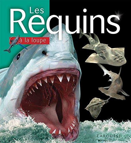 9782035915726: Les Requins
