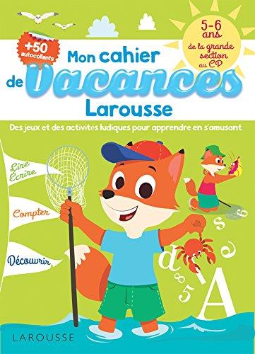 CAHIER DE JEUX DE VACANCES LAROUSSE 5-6 ANS: LOT B.