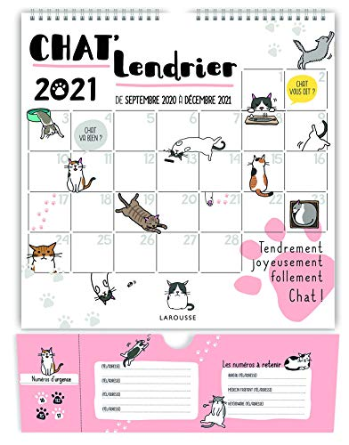 9782035991263: Chat'lendrier 2021