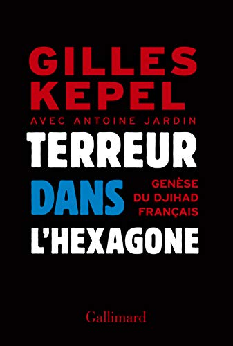 9782070105625: Terreur dans l'Hexagone: Genese du djihad [ jihad ] francais (French Edition)