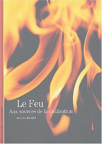 Le Feu (French Edition) (9782070302093) by PASCAL RICHET