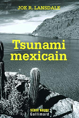 9782070309108: Tsunami mexicain (French Edition)
