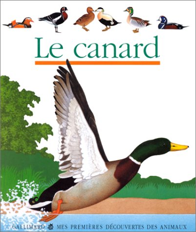 9782070509935: Le canard