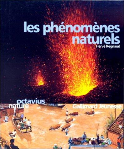 9782070524419: Les phénomènes naturels