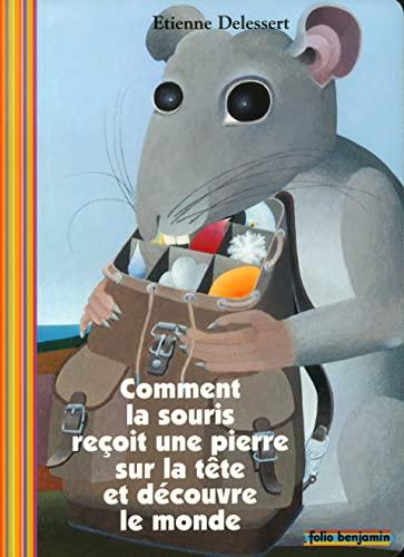 Comment la souris reçoit une pierre sur la tête et découvre le monde (FOLIO BENJAMIN (3)) (9782070535897) by Delessert, Etienne