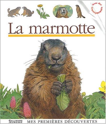 9782070538607: La marmotte (Mes premières découvertes)