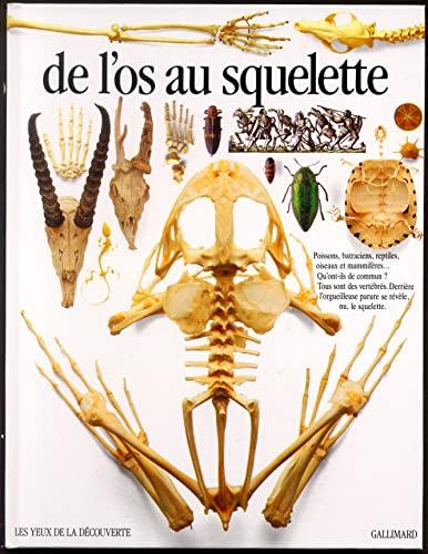 9782070563814: De l'os au squelette