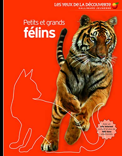9782070622863: Petits Et Grand Felins (French Edition)